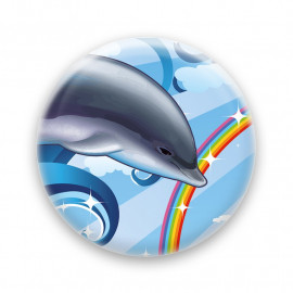 Over the rainbow - Dolphin