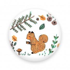 Petit écureuil