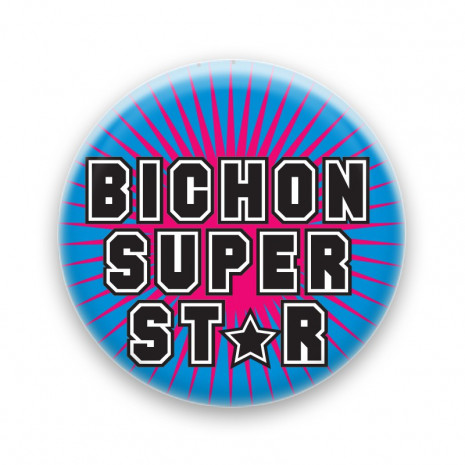 Bichon super star